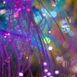 La-Fée-des-bulles